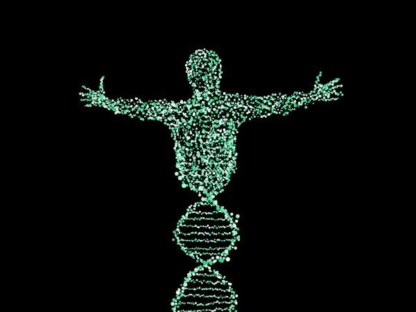 DNA uomo